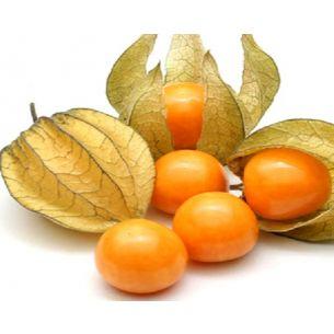 Ananaskers Kaapse kruisbes